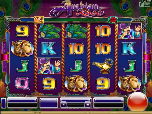 Arabian Rose Microgaming spelautomater screenshot