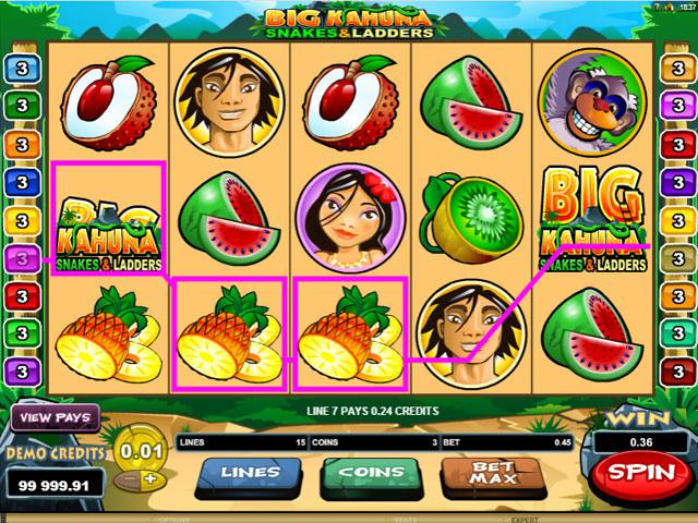 Big Kahuna Snakes Microgaming spelautomater screenshot