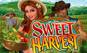 Sweet Harvest spelautomater Microgaming  wyrmspel.com