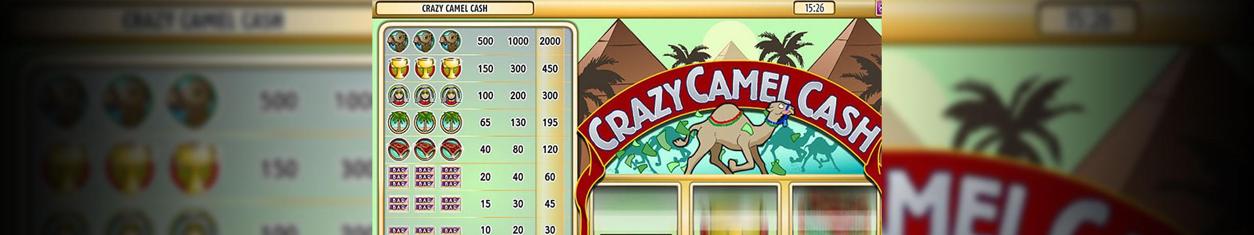 Spelautomater Crazy Camel Cash, Rival Slider - Wyrmspel.com