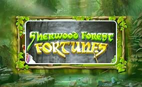 Sherwood Forest Fortunes spelautomater Rival  wyrmspel.com