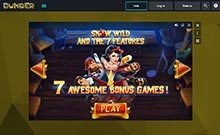 dunder_dunder-casino-games-snow-wild-and-the-7-features-wyrmspel.com